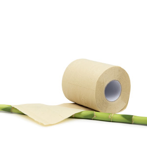 Private Label Unbleached Bathroom Tissue Single Roll